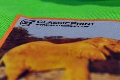 CLassicPrint2